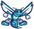 Charlotte Hornets alternative logo 3 embroidery design