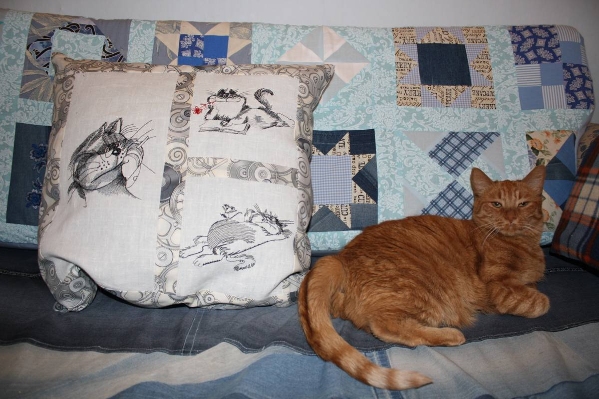 Different cats designs on pillowcase2