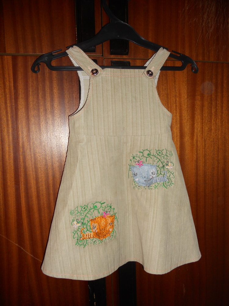 Flying cat design on dress embroidered