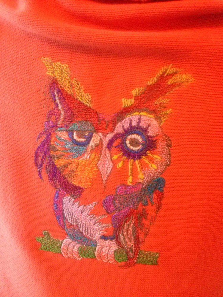 Owl in colors design on sweater embroidered