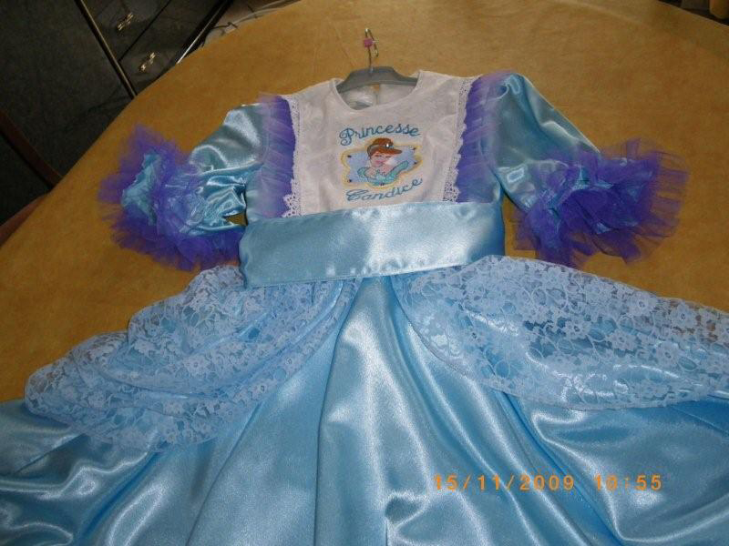 Cinderella embroidery design on dress