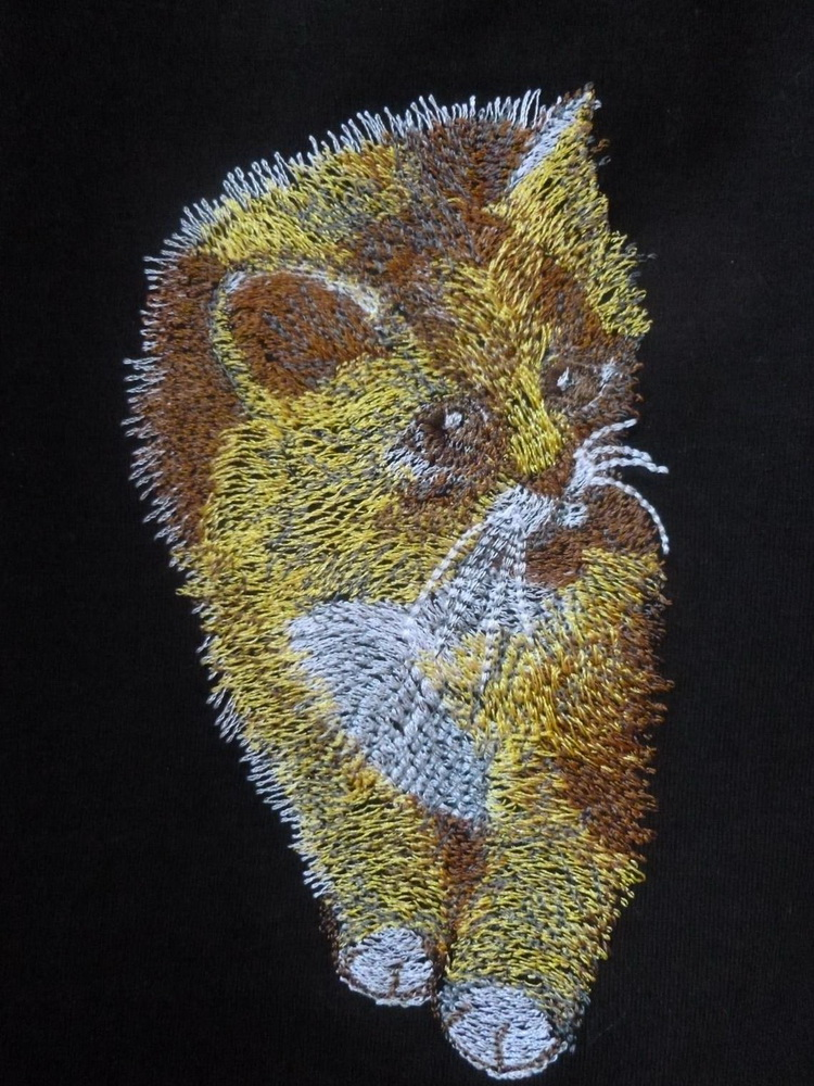 Cute kitten design on shirt embroidered