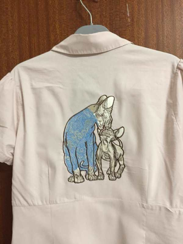 Cotton shirt with Sphynx cat family embroidered