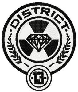 District 13 badge
