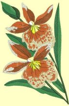 Orchids free embroidery