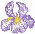 Iris flower free machine embroidery design
