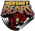 Hershey Bears logo 2 embroidery design