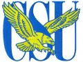 Coppin State Eagles logo embroidery design