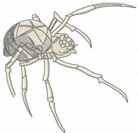 Black widow spider free embroidery design