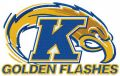 Golden Flashes logo embroidery design