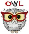 Funny wise owl embroidery design