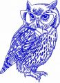 Clever owl in glasses embroidery design