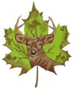 Deer on maple leaf