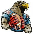 American football eagle embroidery design