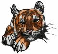 Wild tiger 5 embroidery design