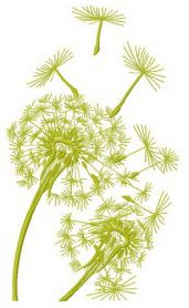 Dandelion 2 machine embroidery design