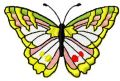 Butterfly free embroidery design