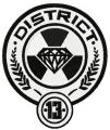 District 13 badge embroidery design