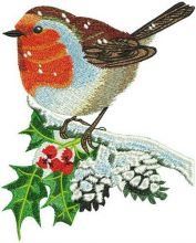 Robin on holly branch