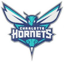 Charlotte Hornets alternative logo 2