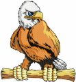 Eagle mascot embroidery design