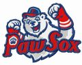 Pawtucket Red Sox logo embroidery design