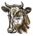 Farm cow embroidery design
