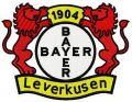Bayer Leverkusen logo embroidery design