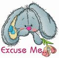 Excuse me 3 embroidery design