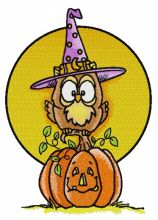 Owl in witch hat