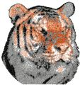 Tiger color photo stitch free machine embroidery design