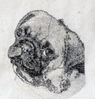 Pug embroidered1