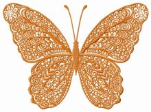Orange lace butterfly