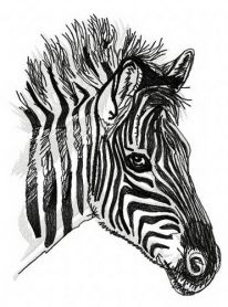 Zebra 3 machine embroidery design