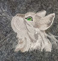 Embroidered curious cat design