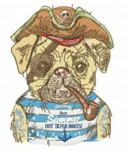 Pirate pug-dog 2