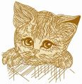 Kitten in a box 3 embroidery design