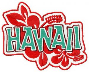 Hawaii badge 3