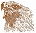 Wild eagle 2 embroidery design