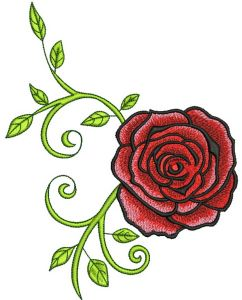 Red grand rose