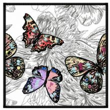 Butterfly's world 4