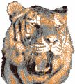 Tiger angry free photo stitch embroidery design