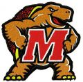 Maryland Terrapins 2 embroidery design