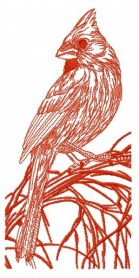 Northern cardinal on tree branch one color machine embroidery design