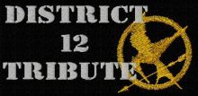 Hunger games logo 2