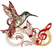 Musical humming-bird 2