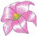 Gladiolus free embroidery design
