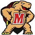 Maryland Terrapins embroidery design