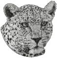 Leopard 2 free machine embroidery design