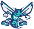 Charlotte Hornets alternative logo 3 embroidery design